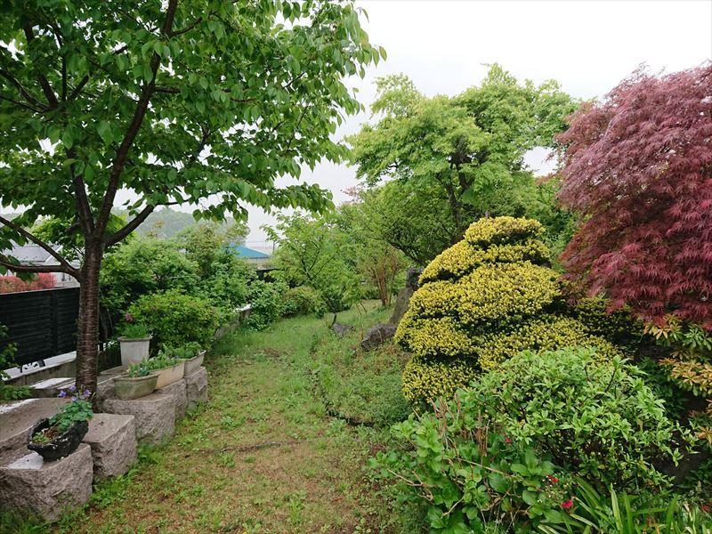 槻の城山霊園 手入れの行き届いた木々