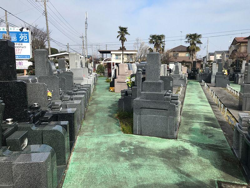 櫻墓苑 水はけのよい参道