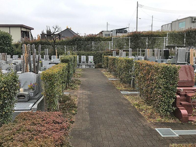 新座墓苑 平坦な参道