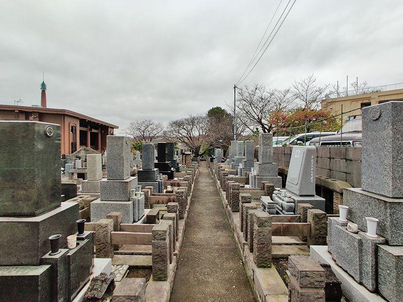 秋峰霊園 ゆとりのある参道