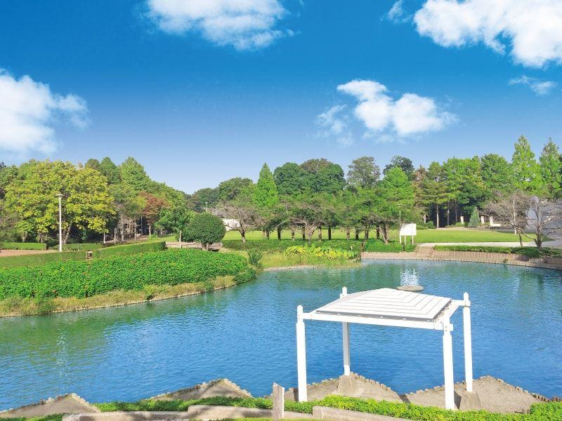 メモリアルパーク近くにある公園の池