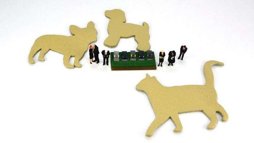 ペット霊園を選ぶポイントと注意点を解説!愛する家族を安心して見送る準備をしよう