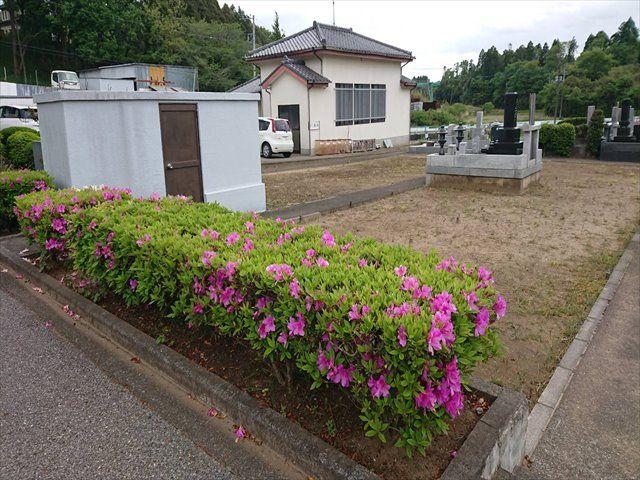 中野霊園 墓域横にある管理棟と駐車場