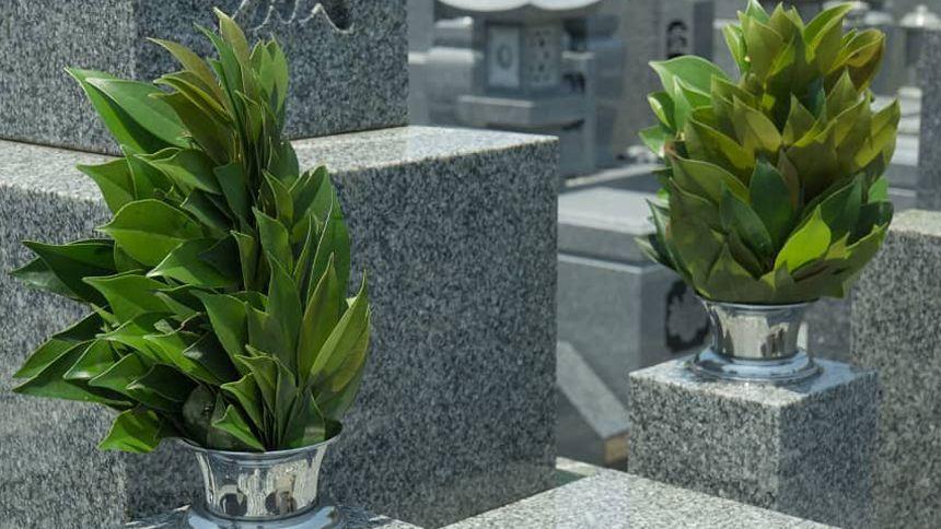 神道のお墓について解説!仏教のお墓との違いや納骨までの流れが分かる