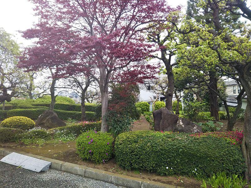 まどかの杜永代供養墓 緑あふれる園内