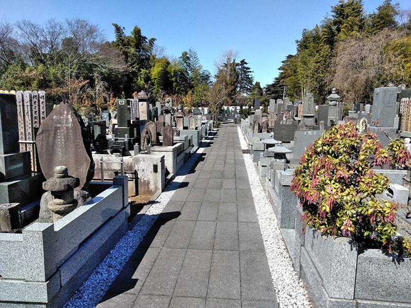 川口草加霊園 はじまりの杜 平坦に整備された参道