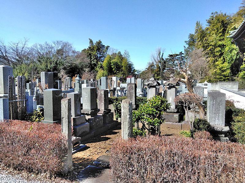 川口草加霊園 はじまりの杜 自然に囲まれた一般墓所