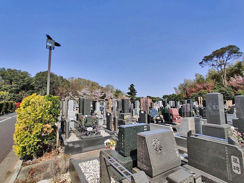 横浜聖地霊園 日当たりが良い霊園