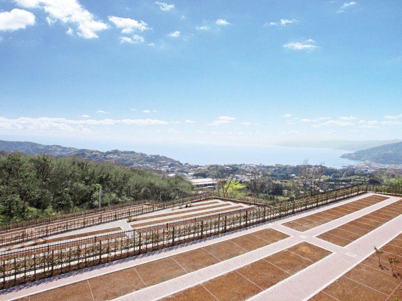 空と海 新・吉祥公園墓地 自然豊かな環境