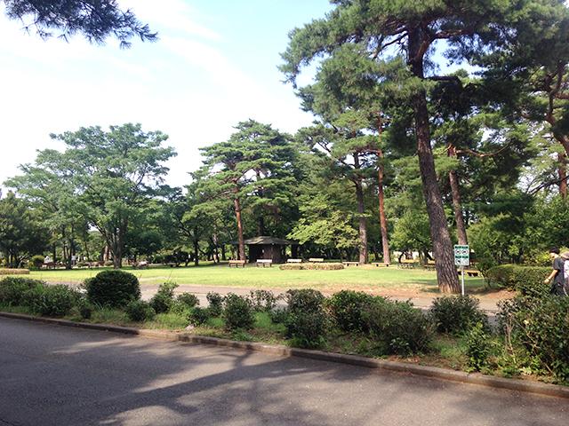 都立 小平霊園 霊園全体面積の半分は緑豊かな公園