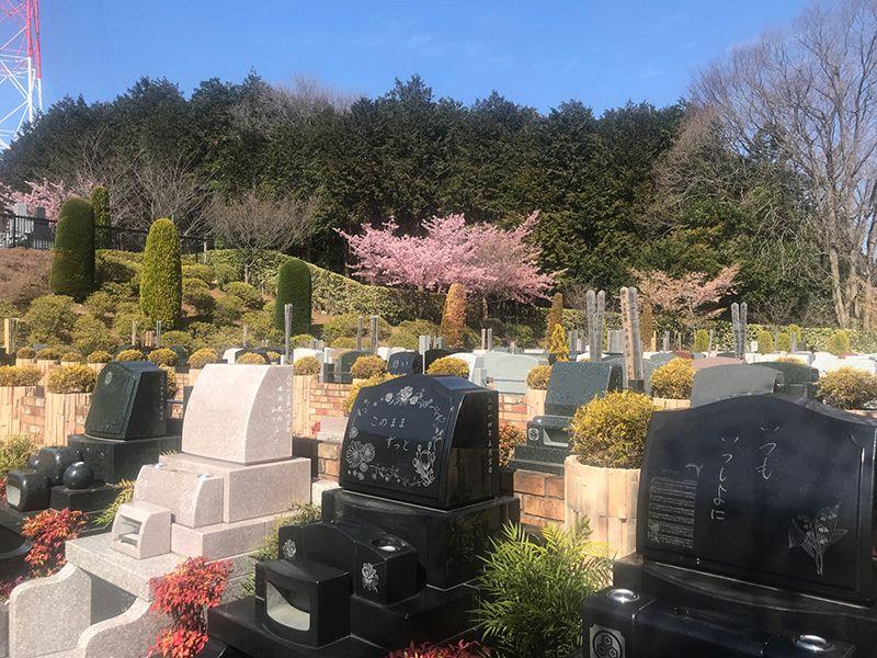恩田の杜霊園 ゆとり墓地(植栽付)