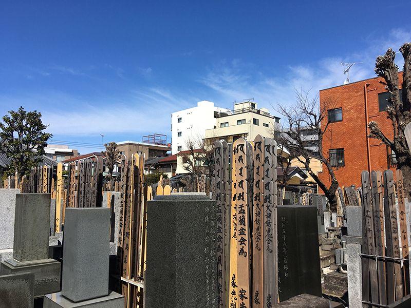 中板橋樹木葬墓地