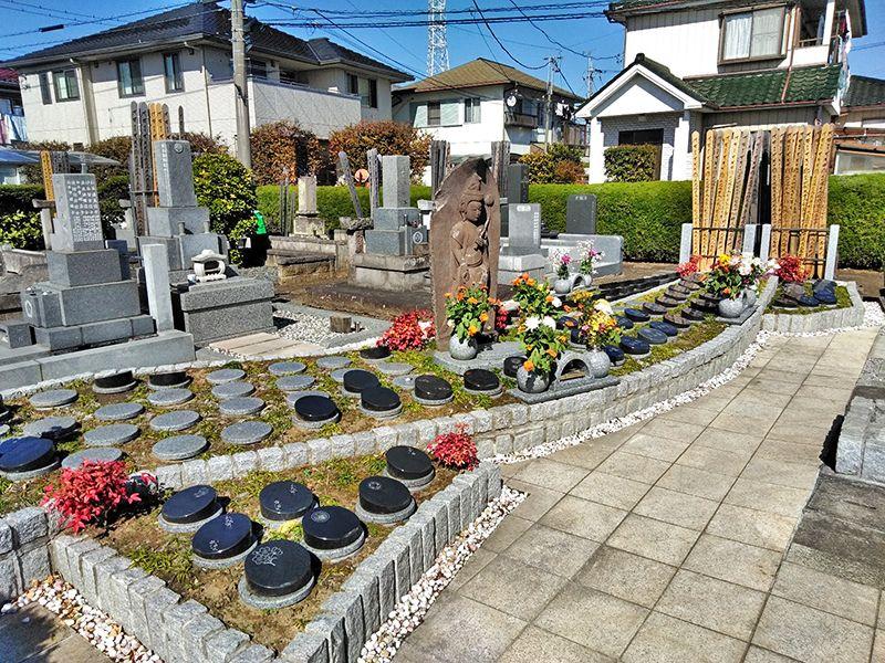 川口新郷樹木葬墓地 日差しに包まれた樹木葬