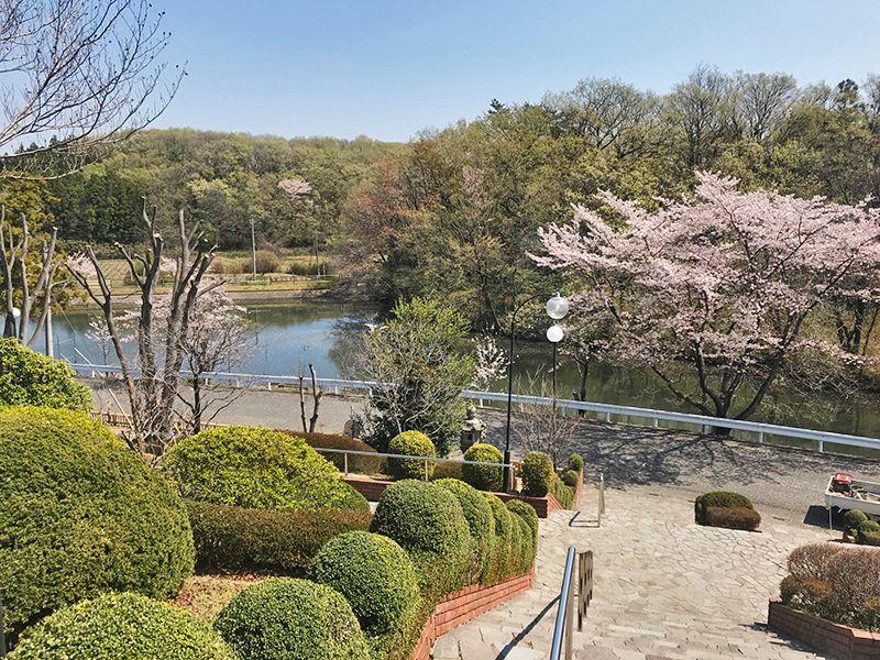 森林公園昭和浄苑「&安堵」 緑豊かな苑内