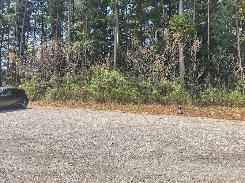 森林公園昭和浄苑「&安堵」 駐車スペース