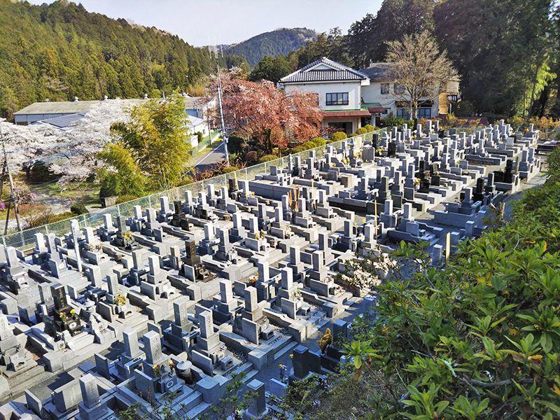 西武セミトリーパーク霊園 管理が行き届いている墓域