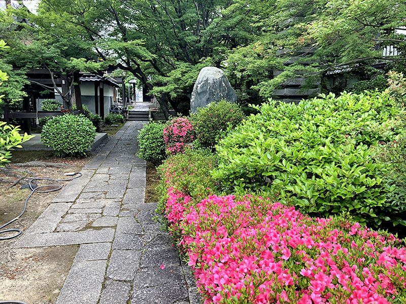 京都メモリアルパーク 樹木葬「椿」永代供養墓