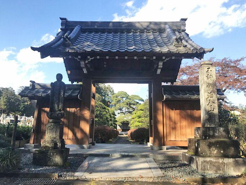 常円寺 のうこつぼ 日当たりがよい山門