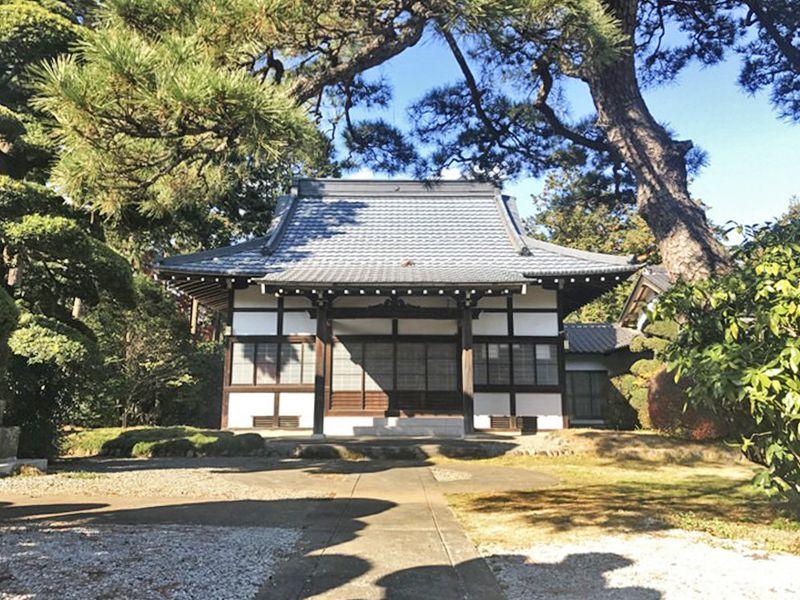 常円寺 のうこつぼ 木々が美しい本堂