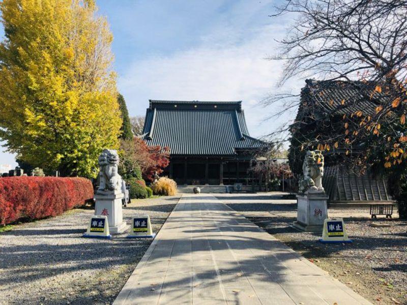 報国寺 のうこつぼ