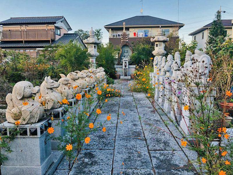 宝性寺 のうこつぼ 植栽が添えられた参道