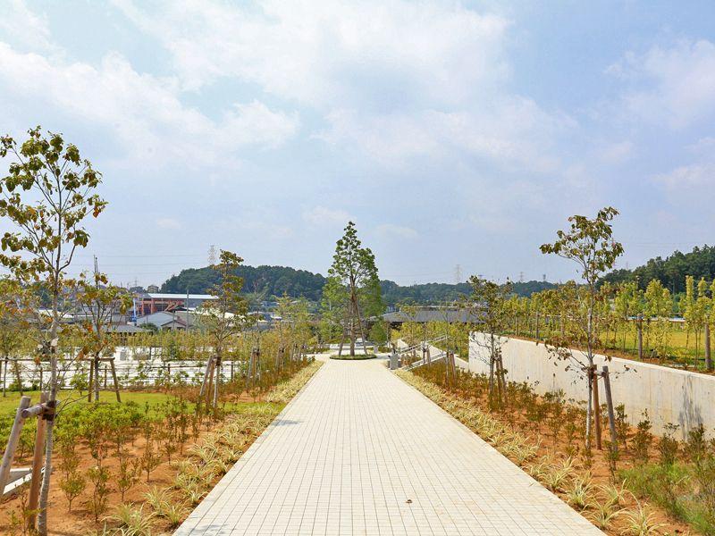 公園墓地 川井聖苑 手入れされた植栽が添えられた参道