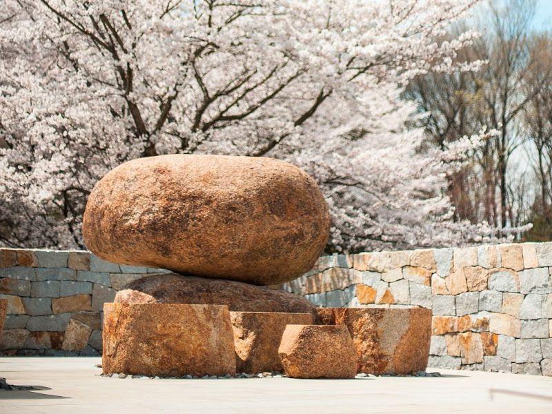 森林公園昭和浄苑 桜に包まれる永代供養墓