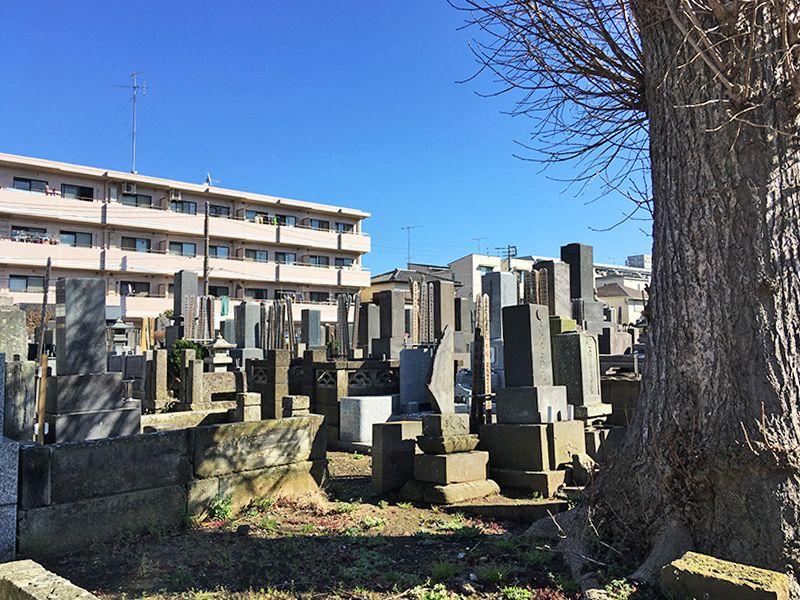 妙善寺 日当たり良好な墓域