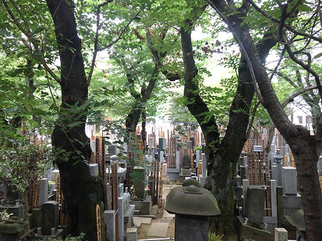 浄心寺 本郷さくら霊園 木々に囲まれた墓域