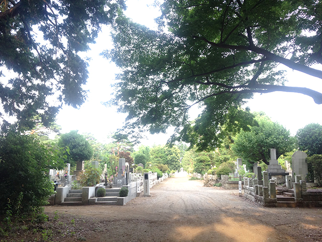 都立 多磨霊園 緑豊かな一般墓所