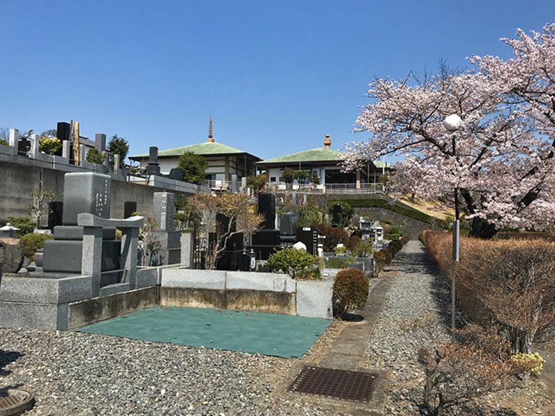 森林公園昭和浄苑 春には桜が咲く園内