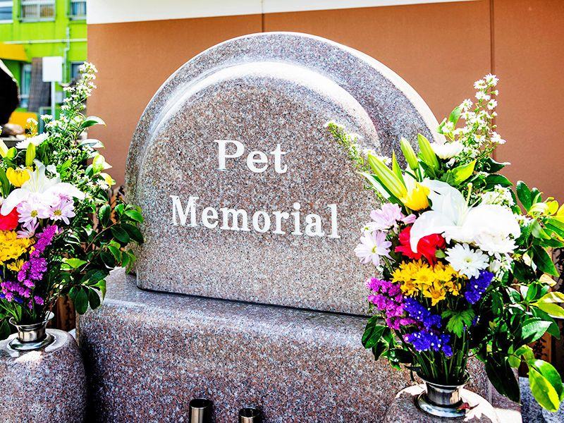 實成寺のお供えの花とペット供養墓