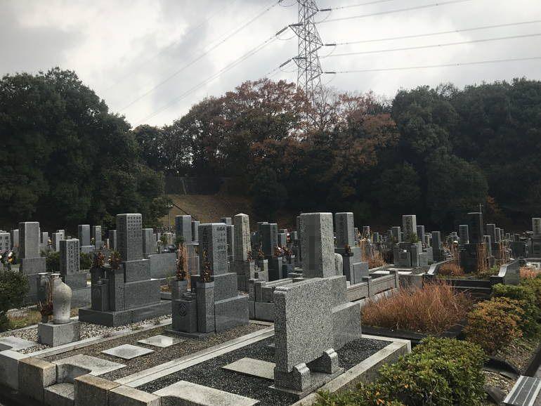 大阪狭山市営 西山霊園 剪定された植え込み