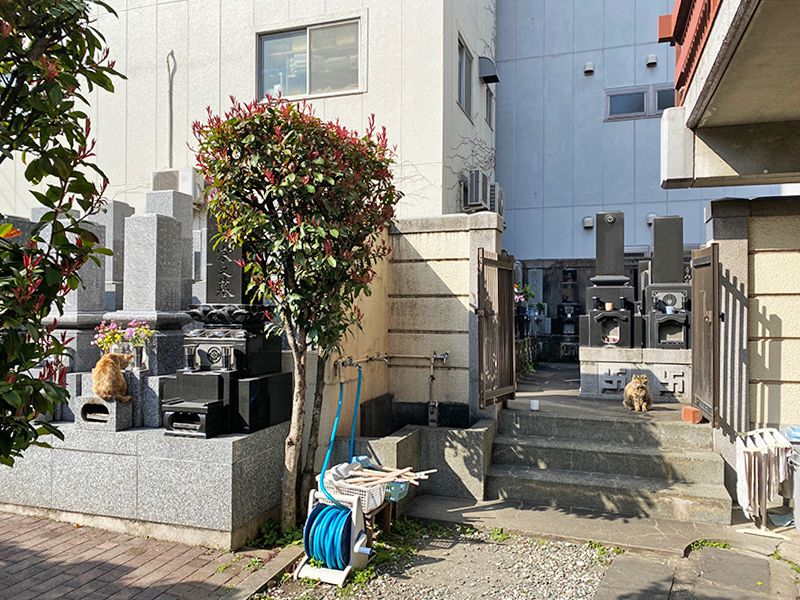 東上野霊苑 墓域の中にある水汲み場