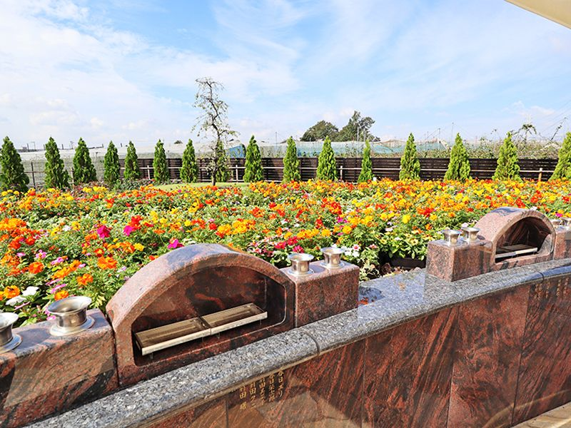 サニープレイス松戸 樹木葬・永代供養墓 エリア一面に咲く花