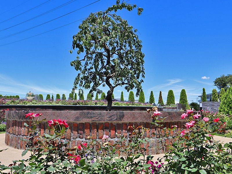 サニープレイス松戸 樹木葬・永代供養墓 樹木式永代供養墓 四季の庭「雪の区」