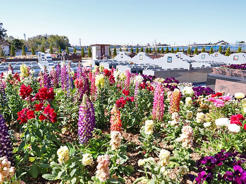 サニープレイス松戸 樹木葬・永代供養墓 色とりどりの花々
