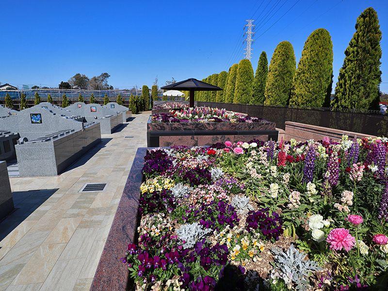 サニープレイス松戸 樹木葬・永代供養墓 暖色系の花