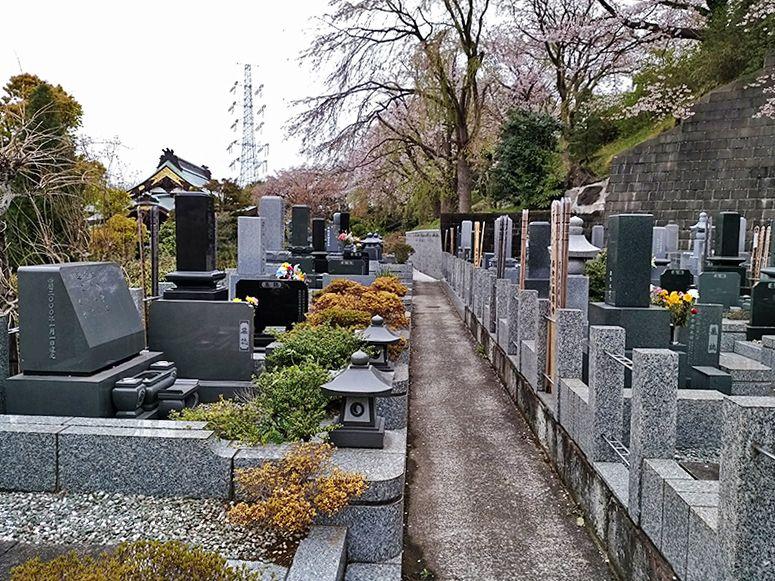 霊園やすらぎの丘 植栽に囲まれた墓域