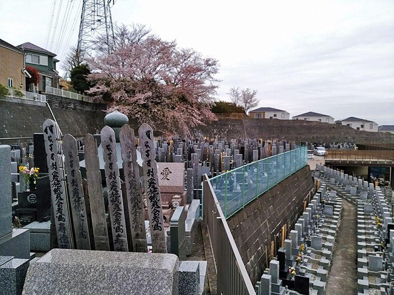 霊園やすらぎの丘 斜面にある一般墓