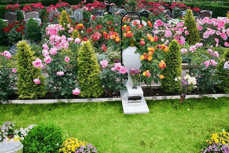 色とりどりの花が咲き誇る秋津ふれあいパーク