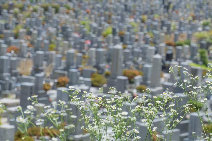 たくさんのお墓の種類が並ぶ霊園