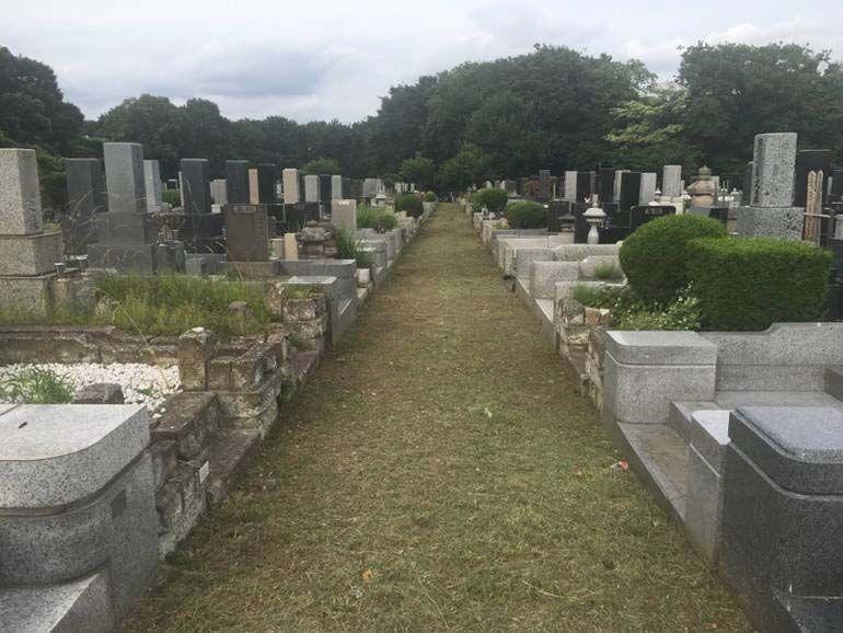 川崎市営 緑ヶ丘霊園 芝生が敷き詰められた参道