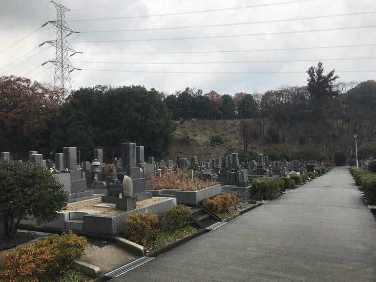 大阪狭山市営 西山霊園 色付き始めた植栽