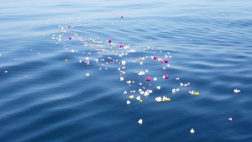 みんなの海洋散骨での献花