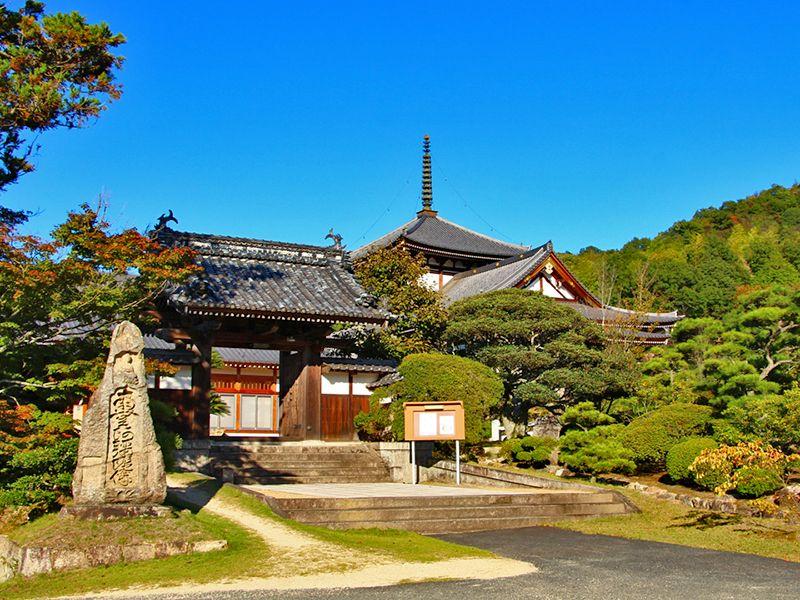 円珠院墓地