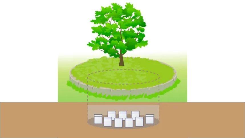 シンボル共通骨壺ありの樹木葬