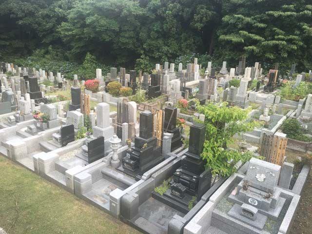 川崎市営 緑ヶ丘霊園 緑に囲まれた墓域