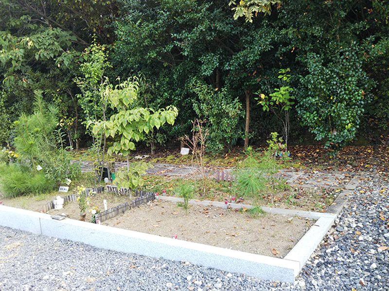 高平寺 樹木葬