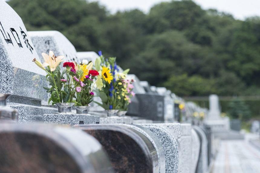 お墓に供えられている花